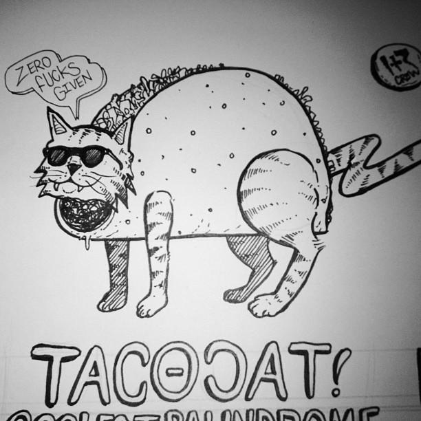 #tacocat gives not a fuck!