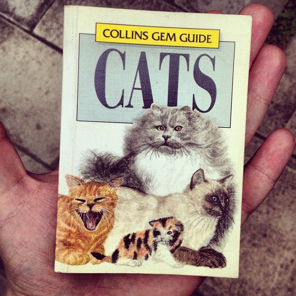 Book of the day. #caturday (Taken with  Instagram  at The Hollywood Dell)