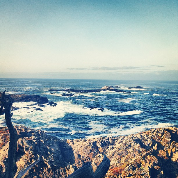 Good morning California! (Taken with  Instagram  at Point Lobos State Reserve)