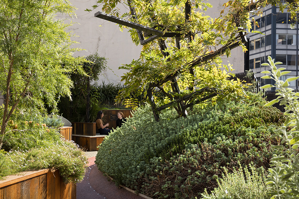 Urban rooftop gardens are a fantastic way to incorporate functional greenery into our cities.