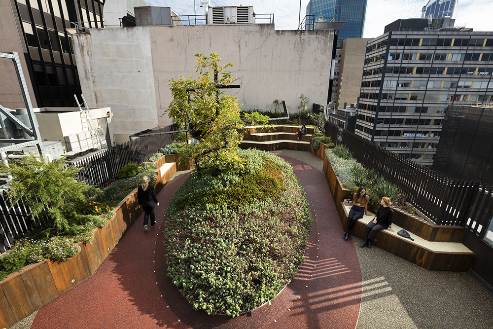 Eight years on, Growing Up Green Roof is a thriving rooftop garden and a popular place for the building's occupants to hangout. There's even been a wedding up there!