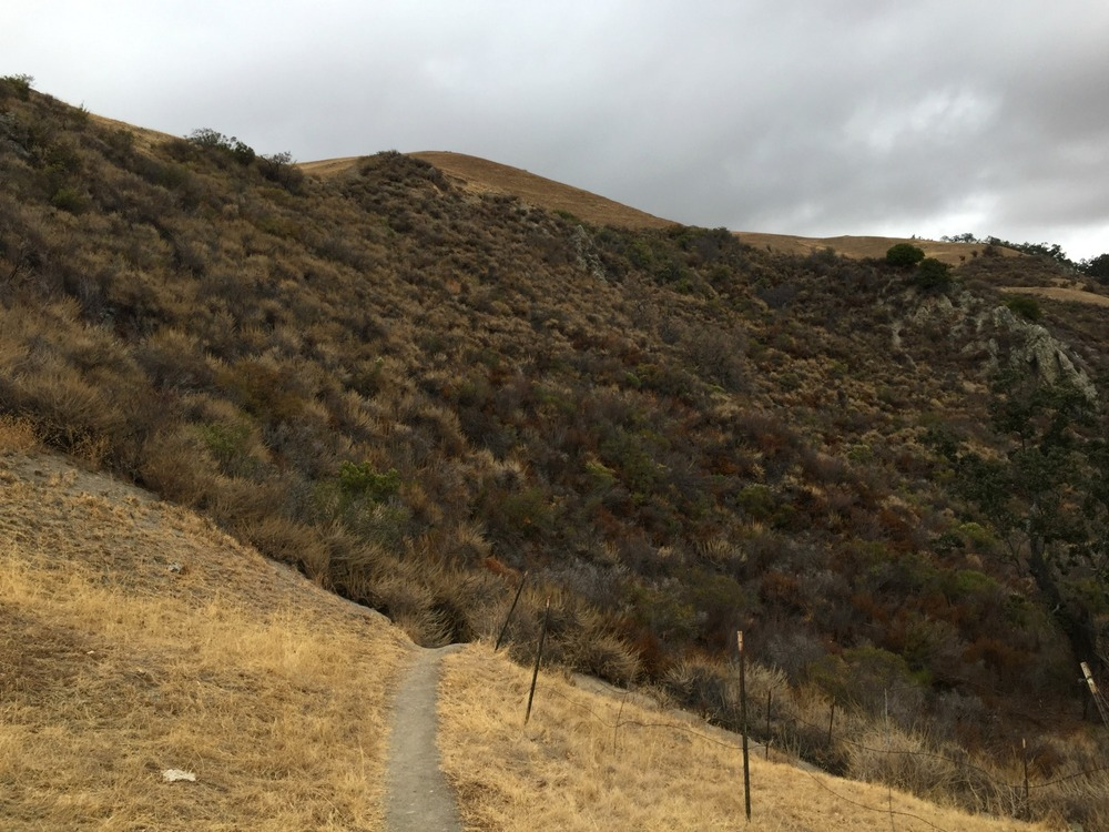 Sunol Wilderness Park