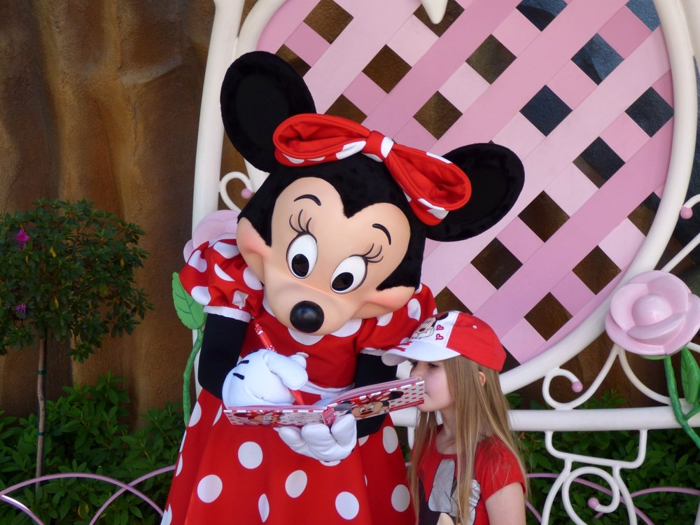 Our little Minnie Mouse fan and authograph hunter.
