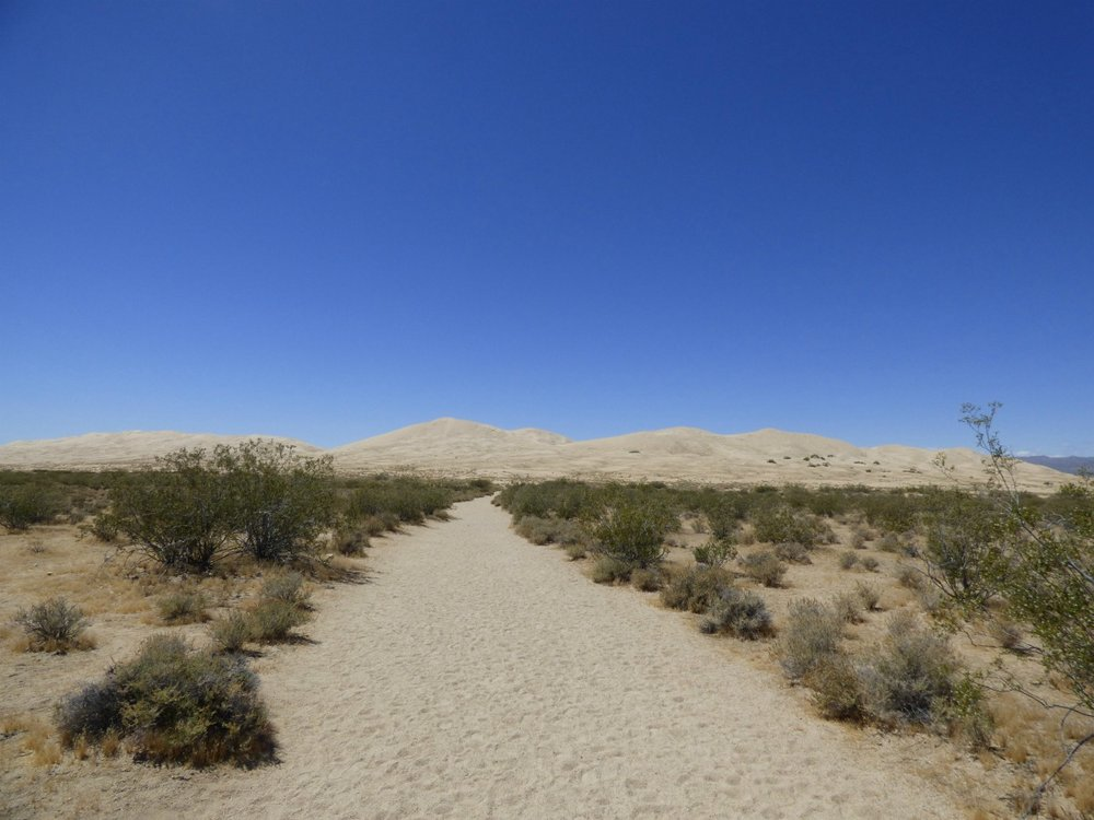 Hiking to the Sand dunes.