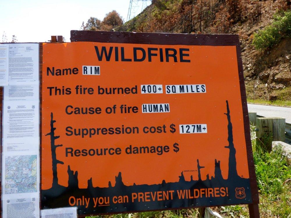 Tosi surullista mutta usein nämä palot alkavat ihmisen huolimattomuudesta. Rim Fire alkoi metsästäjän laittomasta nuotiosta metsässä.