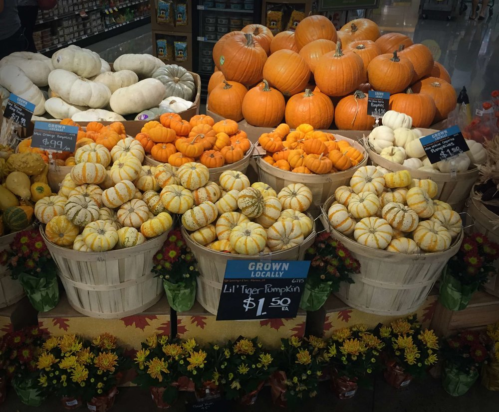 Syksyn tulosta ja Halloweenin lähestymisestä muistuttavat myös kauppoihin ilmestyneet kurpitsat joita edellispäivänä ihailin kaupassa.