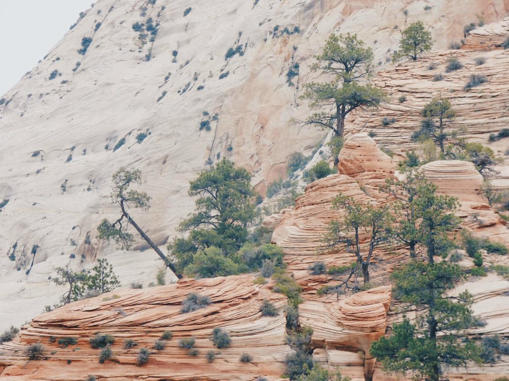 Zion National Park is full of beautiful rock formations and hiking trails