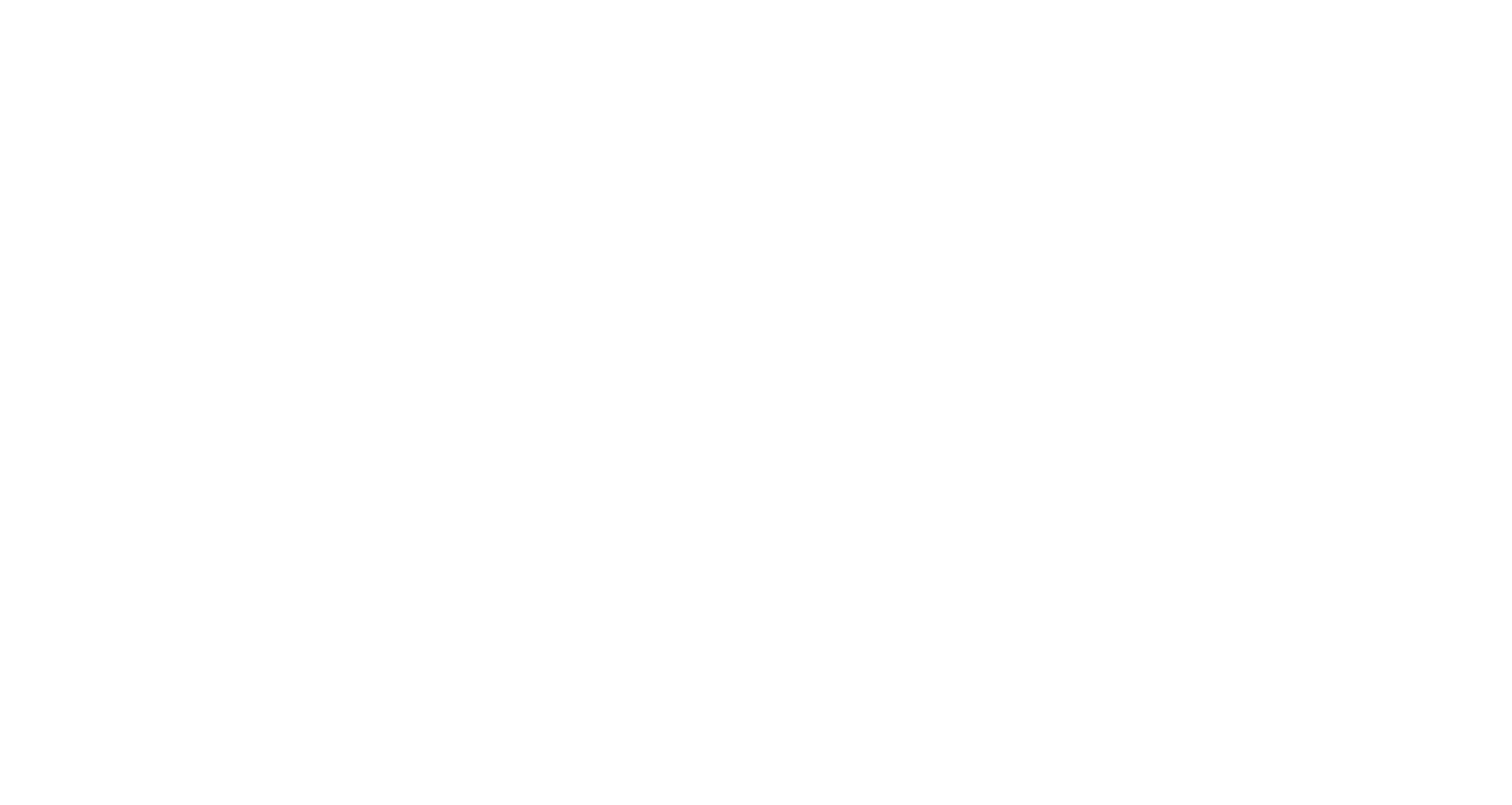 Top Flight Detailing