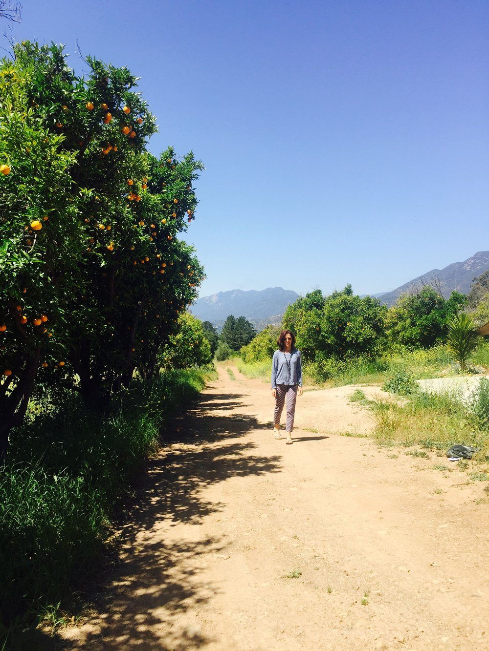 COME AND JOIN ME IN OJAI SEPTEMBER 16-17 art retreat with meditation and optional hiking