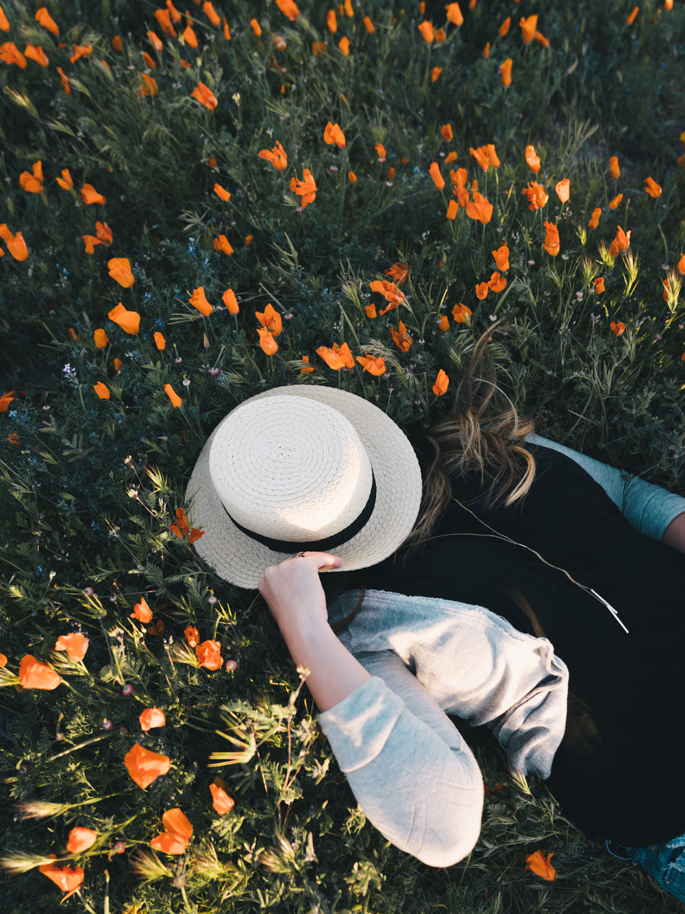 Tara  |4.4.17| Antelope Valley Poppy Reserve, California