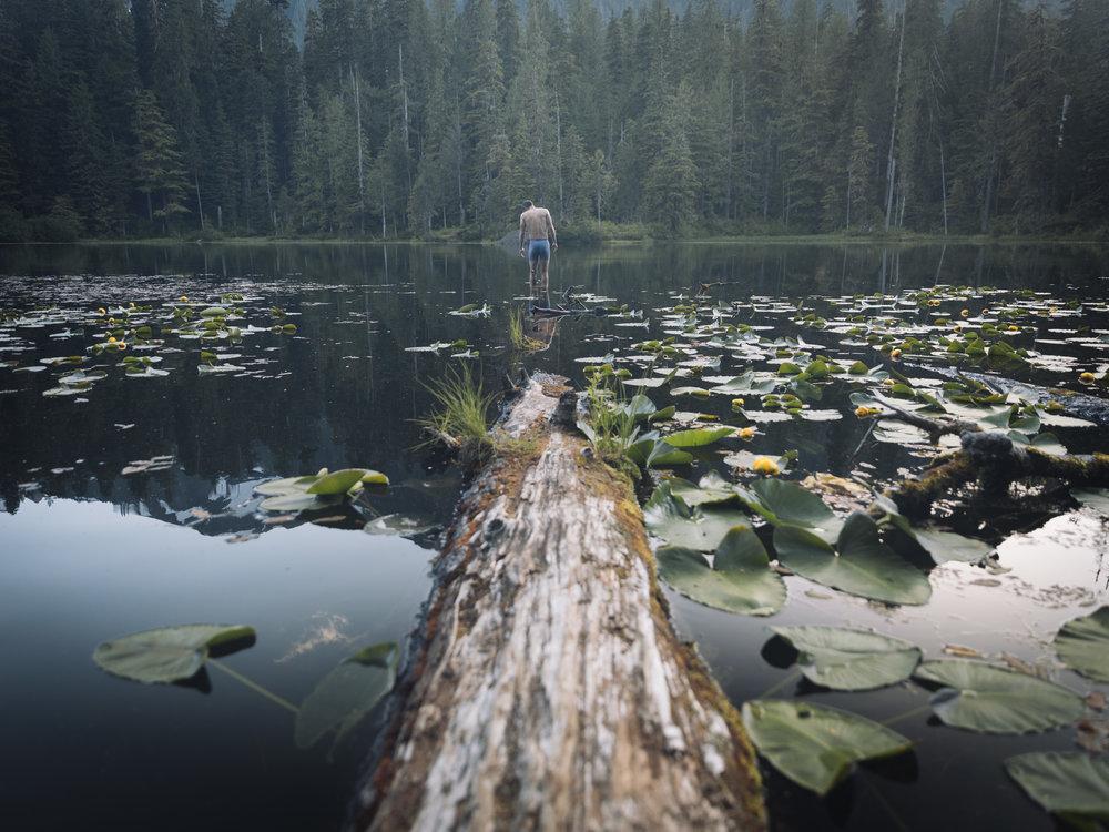 Thomas for GLCO  |7.15.17| Olympic National Park, Washington