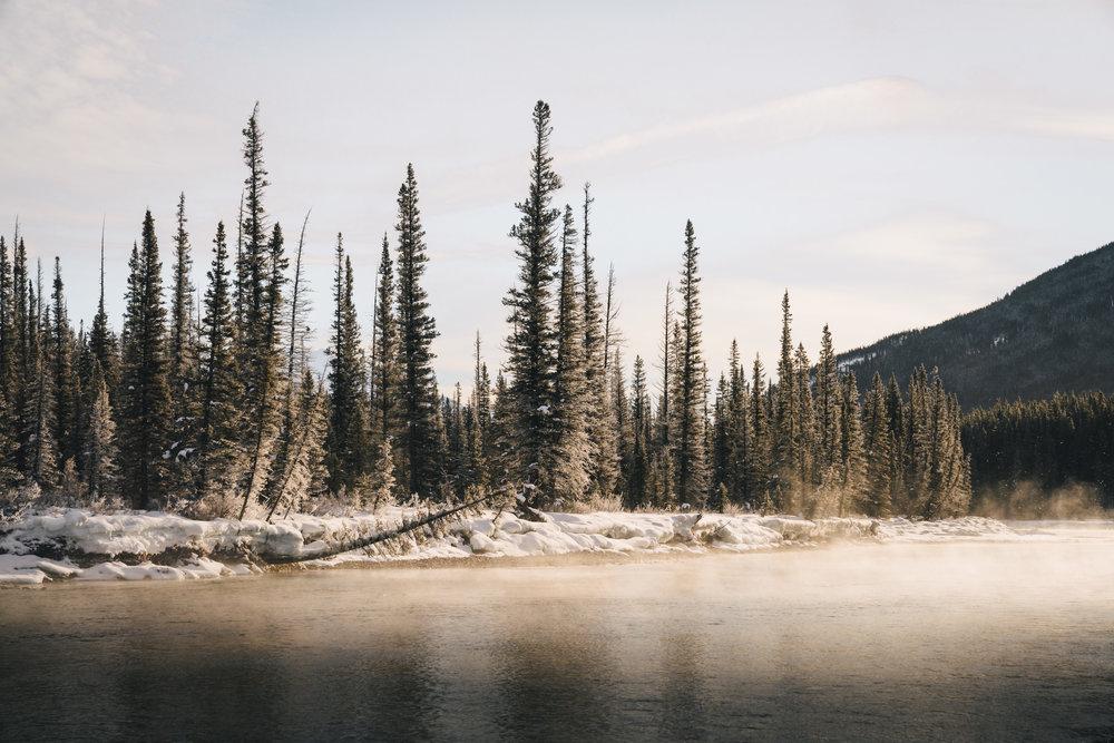Gold & Ice  |2.15.18| Banff National Park, Alberta