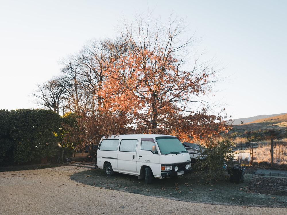 NZ_VW.jpg
