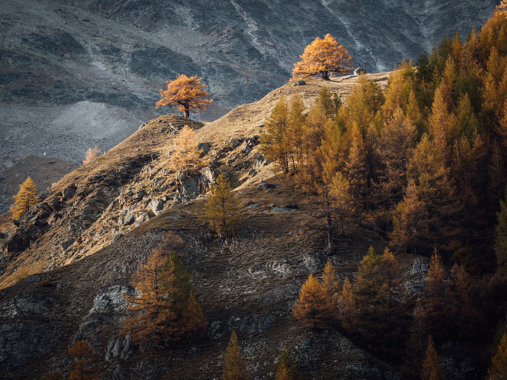 Swiss Alps  |10.20.17| Saas Fe, Switzerland