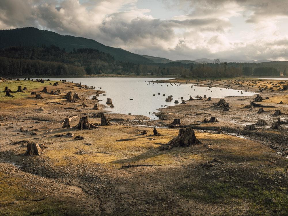 Alder Lake  |4.11.18| Alder Lake, Washington