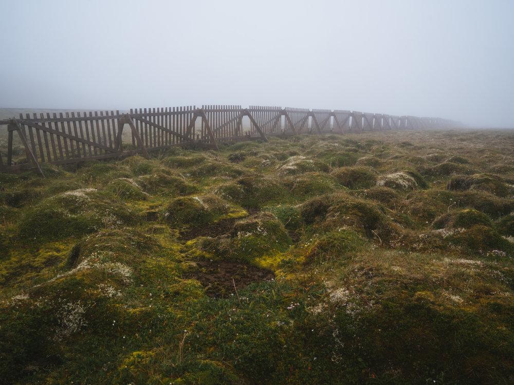 Fences and Fog  |7.23.16| West Coast of Iceland