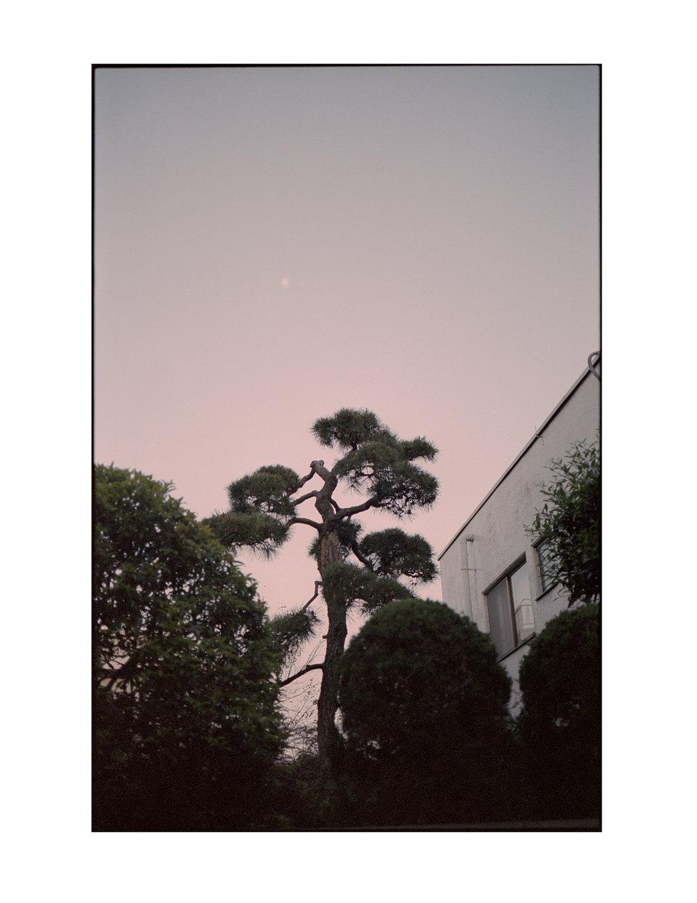 Tokyo_0021.jpg
