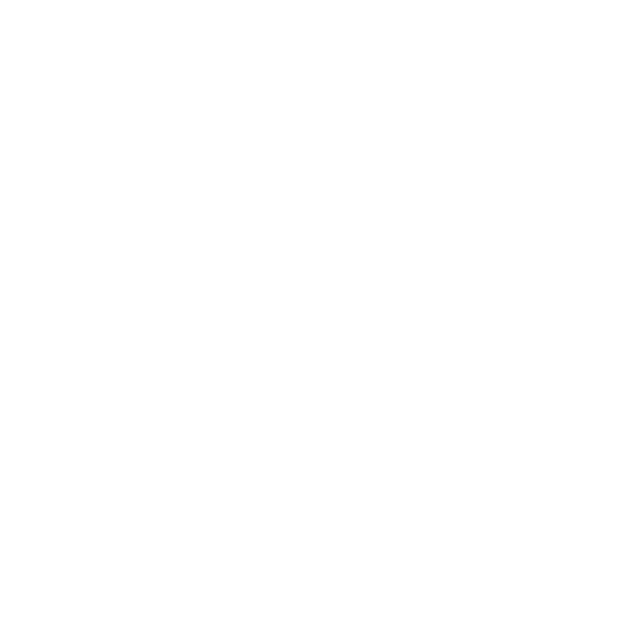 Life Force Acupuncture & Wellness