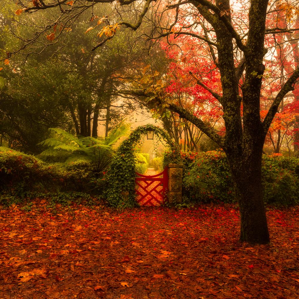 Bebeah Garden Gate