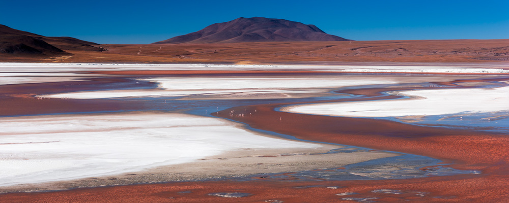 Wide shot of Laguna Colorada showing the red waters and white borax banks