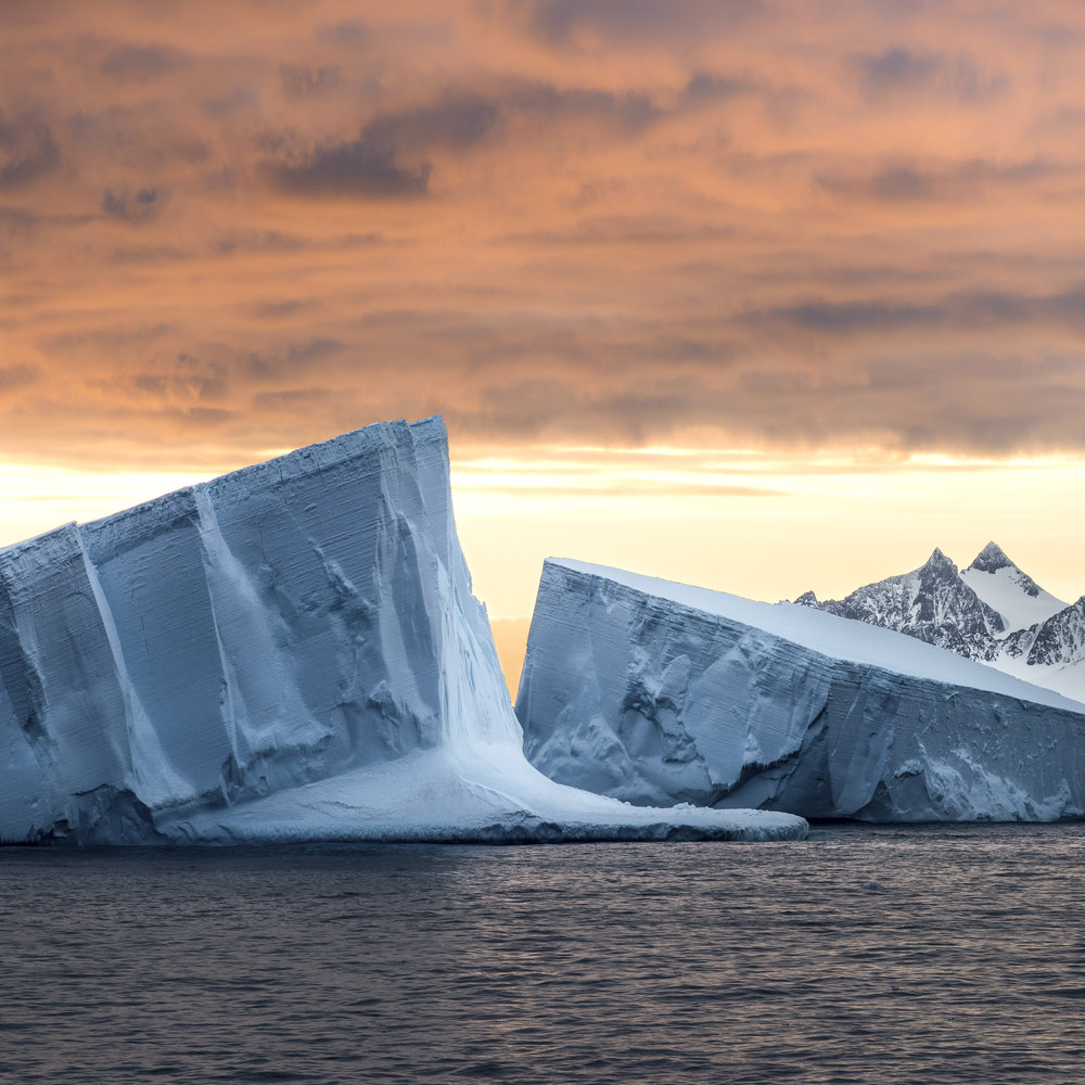Giant tabular icebergs at sunrise.