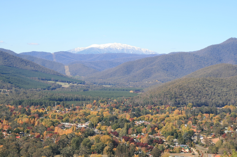 Mount Bogong presiding over Bright