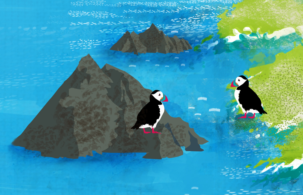 puffin-pals.jpg