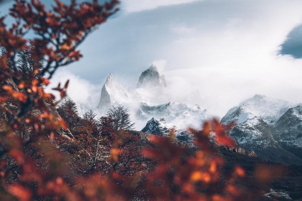 Patagonia 101 (1 of 1).jpg