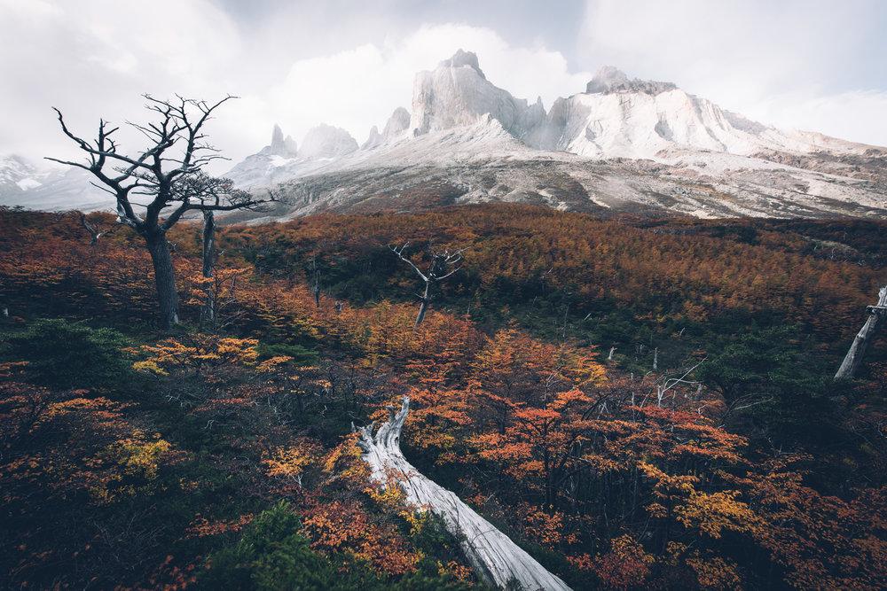 Patagonia 106 (1 of 1).jpg