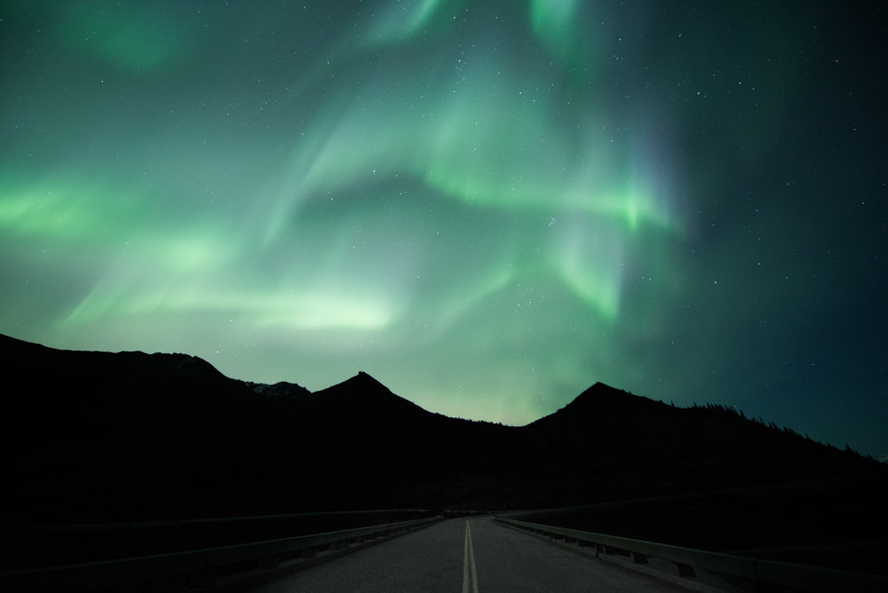 Alaska retkilehti 11 (1 of 1).jpg