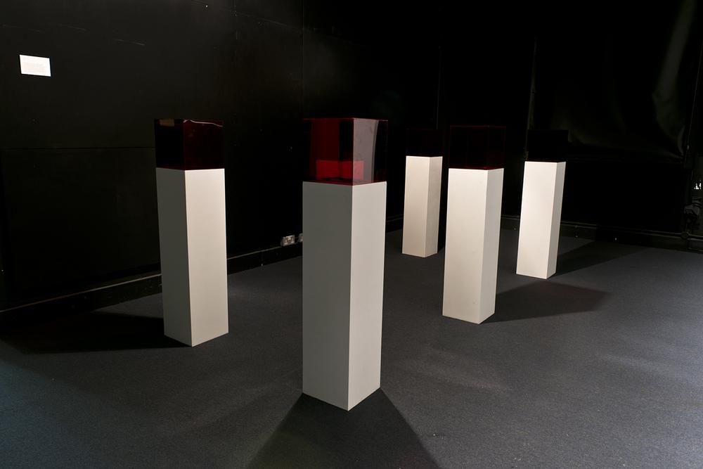Atrophy, 2016, installation view