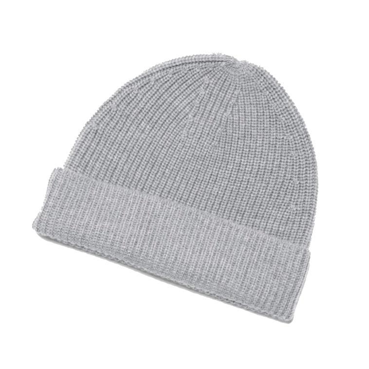 everlanebeanie.png