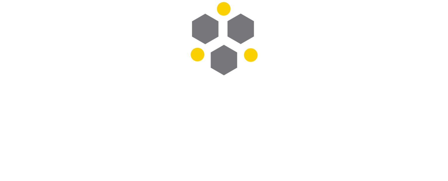 Greater Washington Internship Coalition