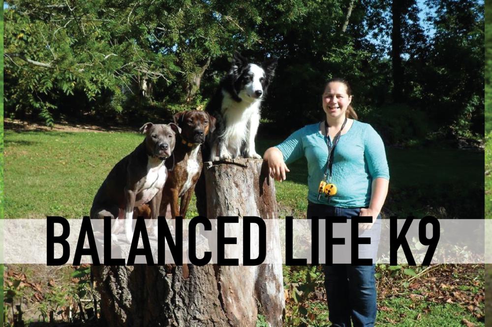 BALANCED LIFE K9-01.png