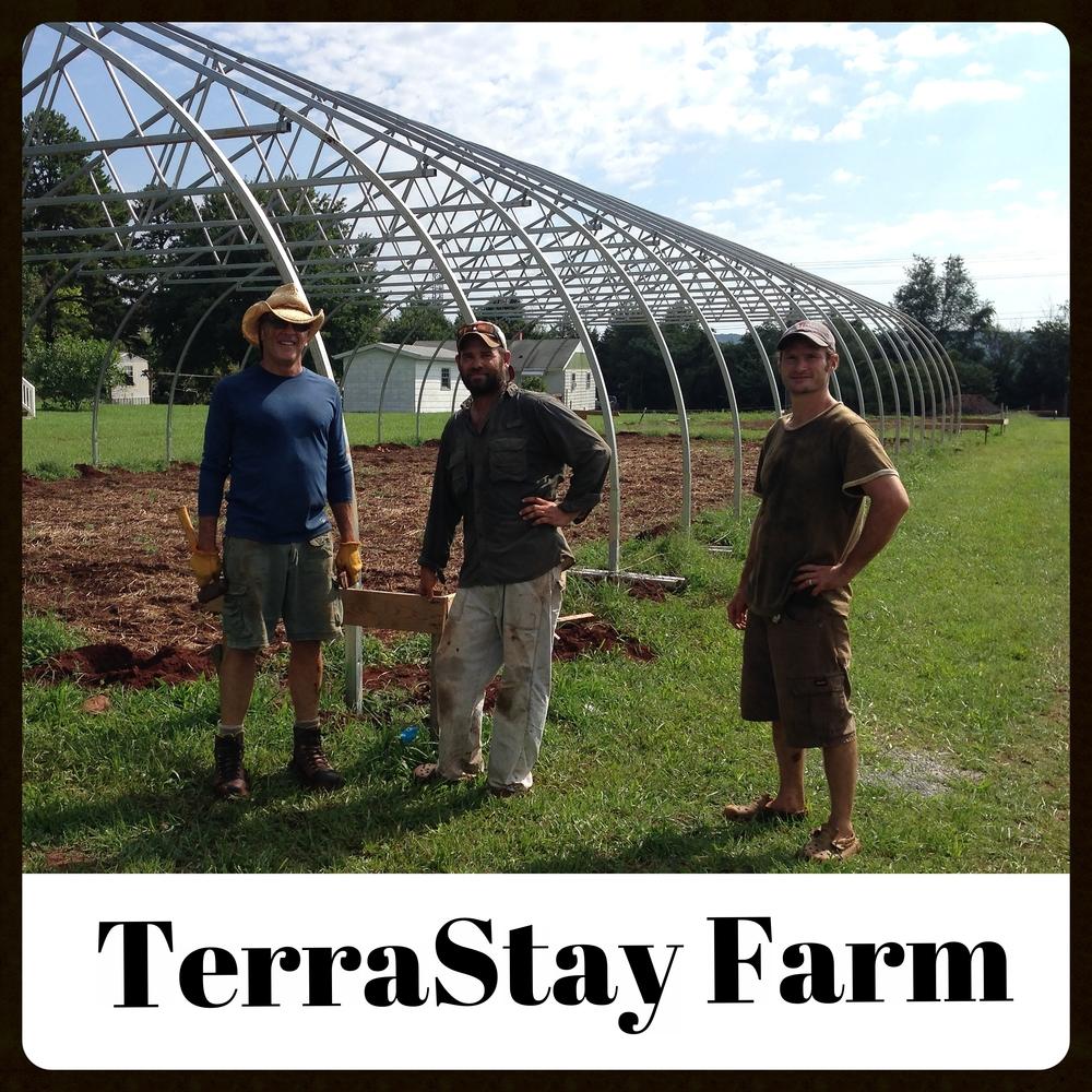 TerraStay.jpg