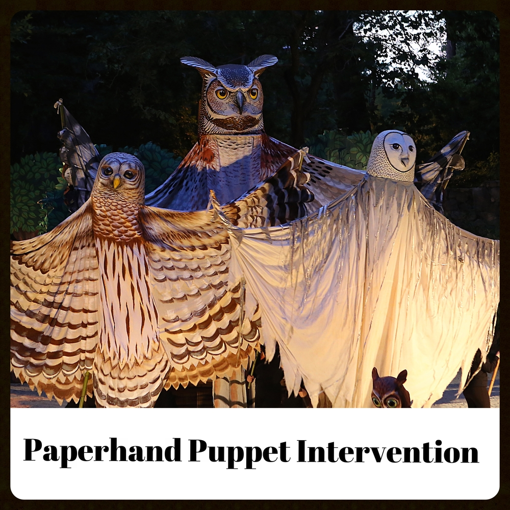 Paperhand Puppet Intervention.jpg