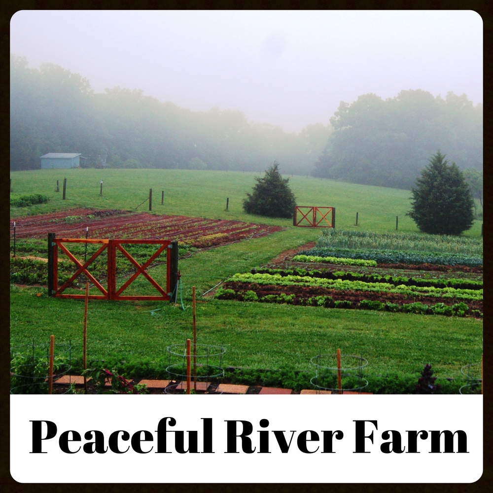 PeacefulRiverFarm.jpg