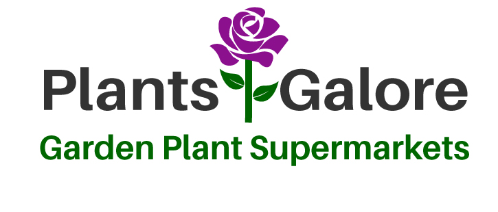 Plants Galore | Garden Plant Supermarkets