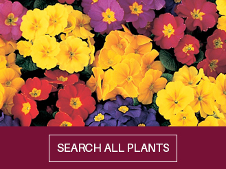 search-all-plants.jpg