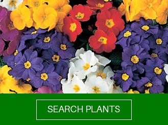 search-all-plants.jpg