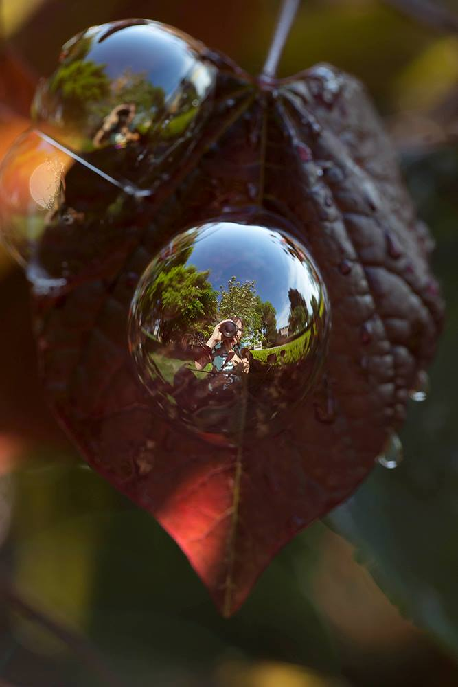 Mel Karlberg Photography