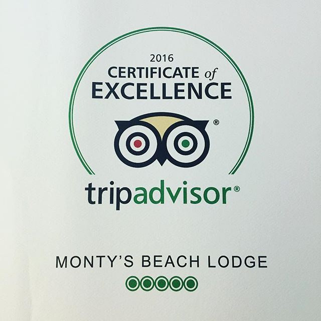 Huge shout out to my amazing staff once again for achieving Award of Excellence 2016 #amazingstaff #beachhotel #surfcamp #nicaragua #retreat #yoga #surf #travel