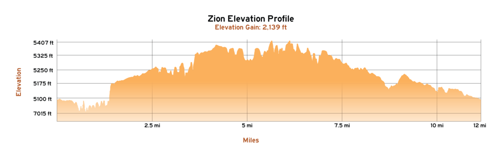 Zion Elevation Profile-01.png