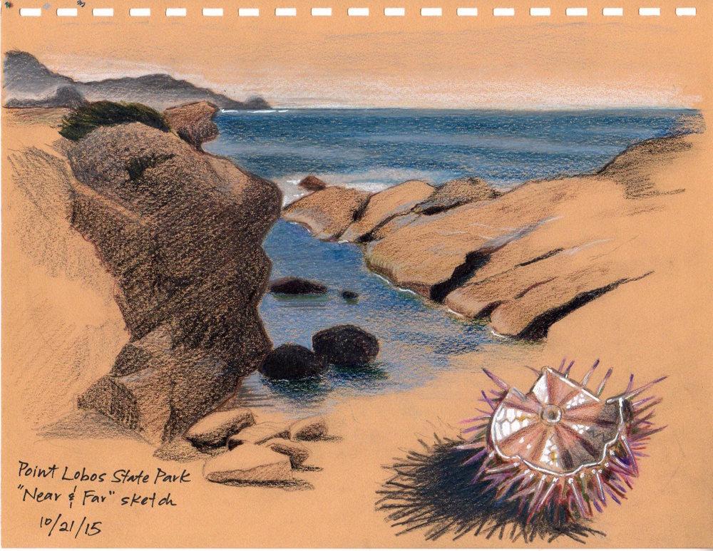 Near and Far (Point Lobos)