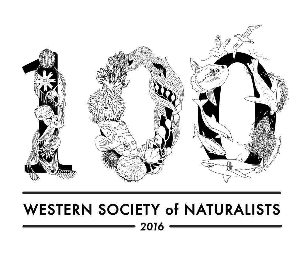 WSN 100th Logo