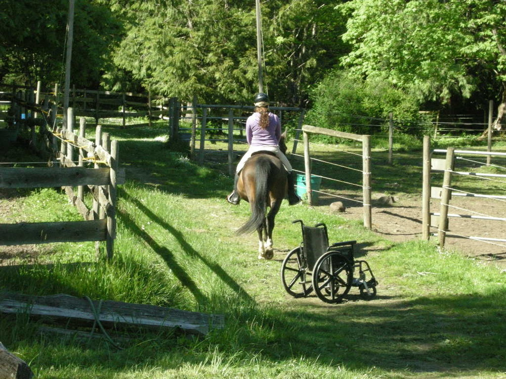 wheelchair-and-horse.jpg