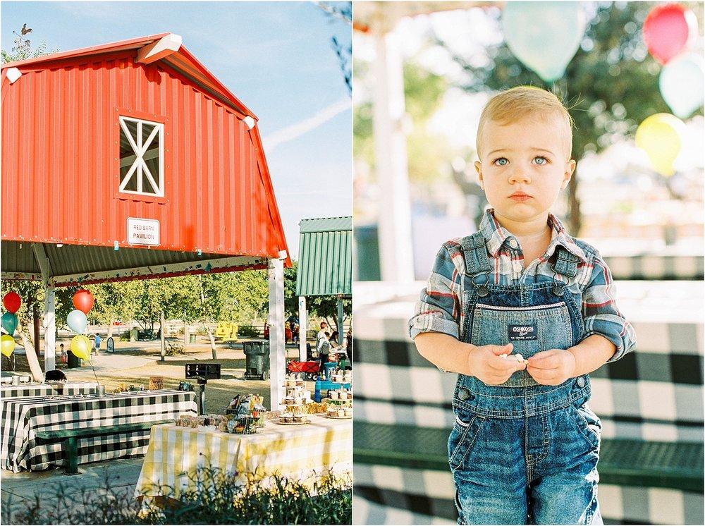 Farm Birthday Party 2.jpg