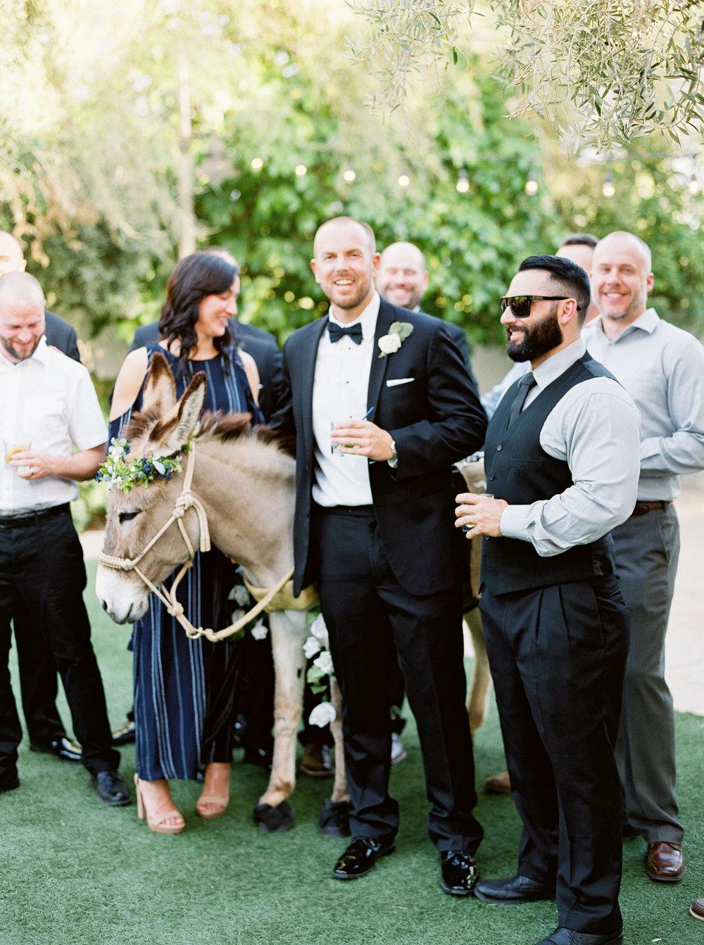 El_Chorro_Destination_Wedding_Planner_27.jpg