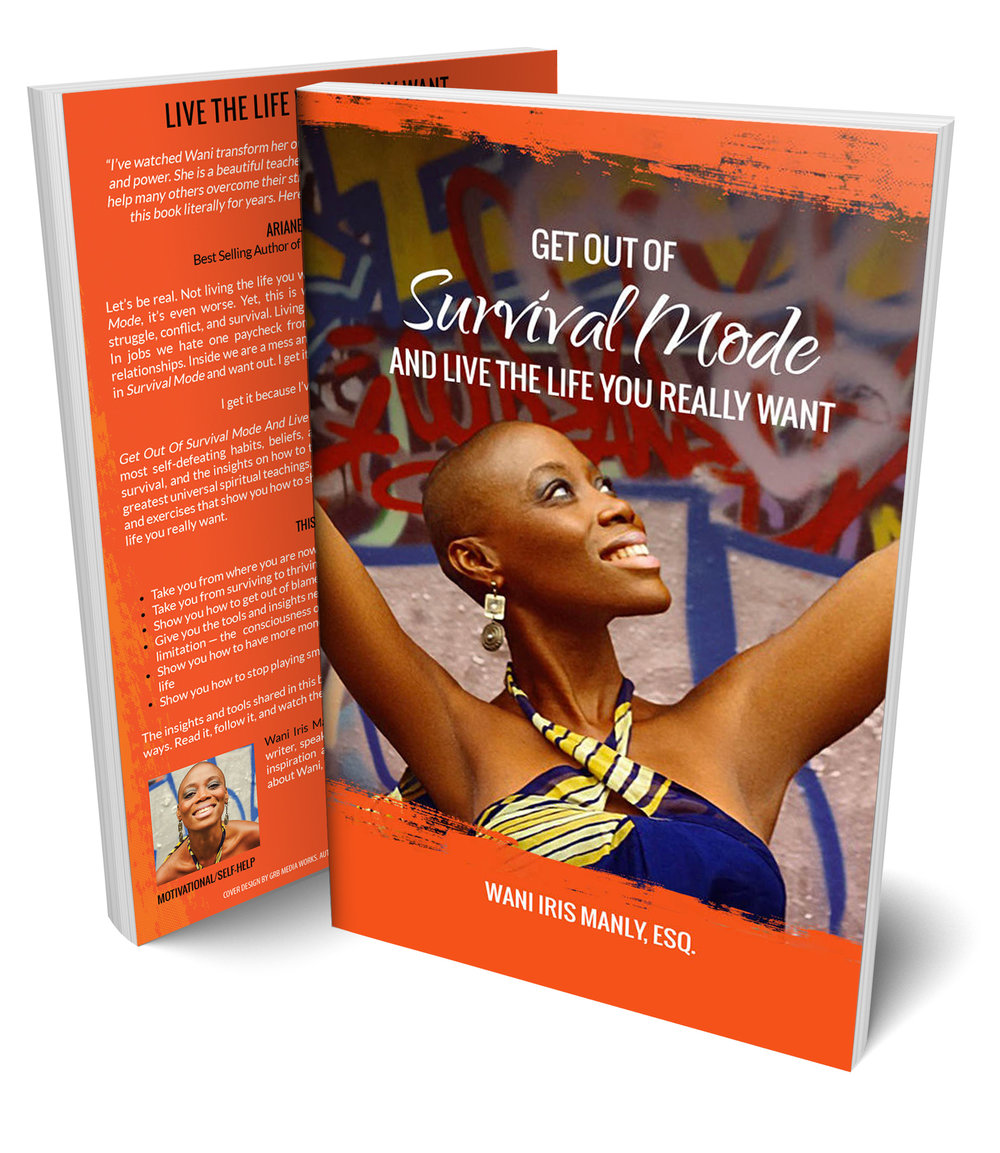 Book-GetOutOfSurvivalMode.jpg