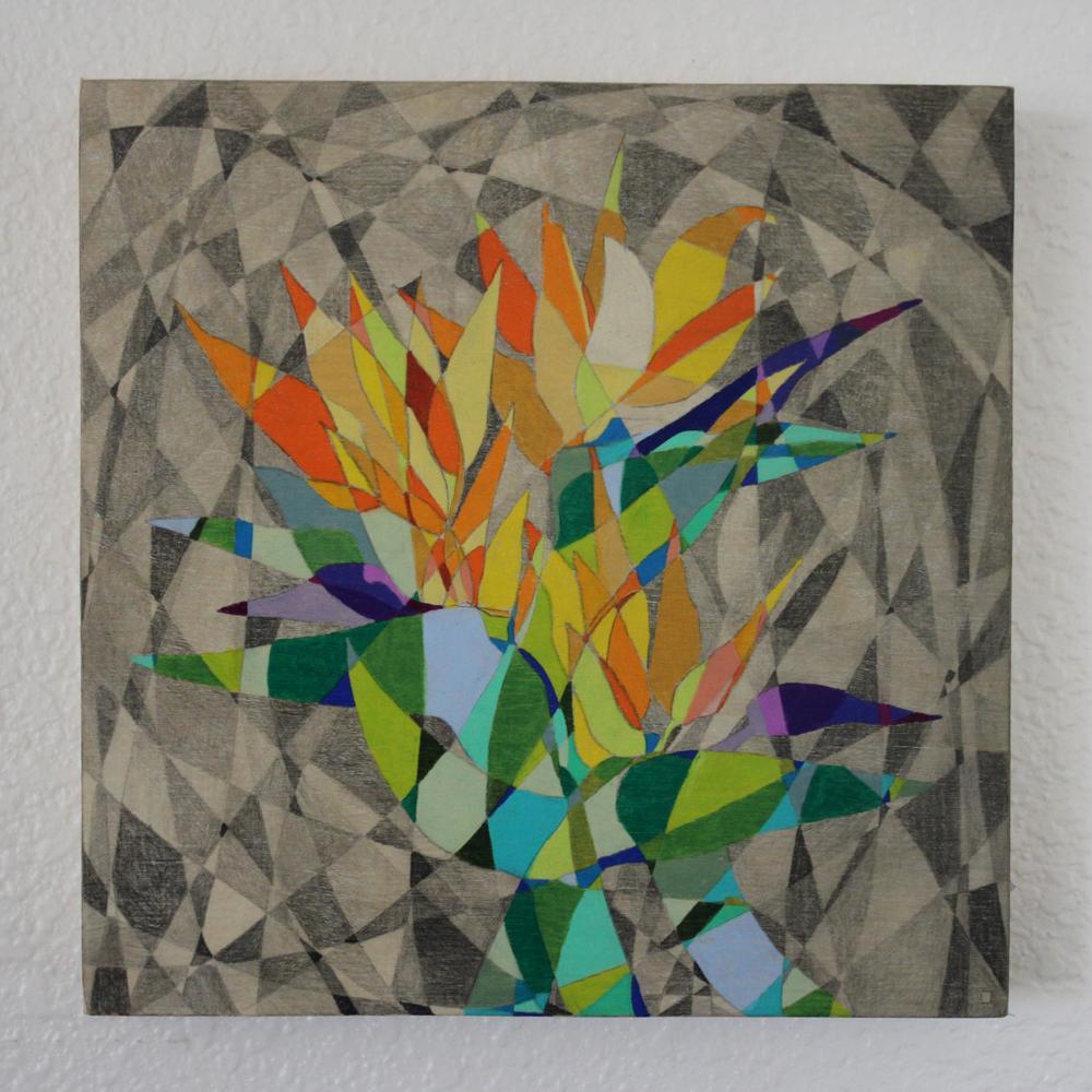 Bird of Paradise Pencil on Panel 8in x 8in 2016 Boz Schurr.jpg